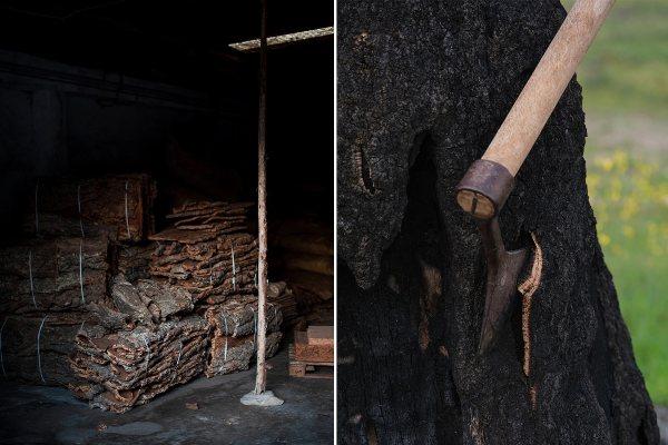 Održiva kolekcija nameštaja izrađena od spaljene plute