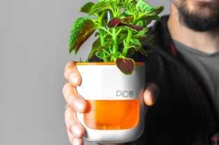 mini-vrt-pico-omogucava-rast-biljaka-uz-pomoc-svetlosti.jpg